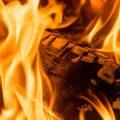 Kiln Dried Ash Log Burning Example