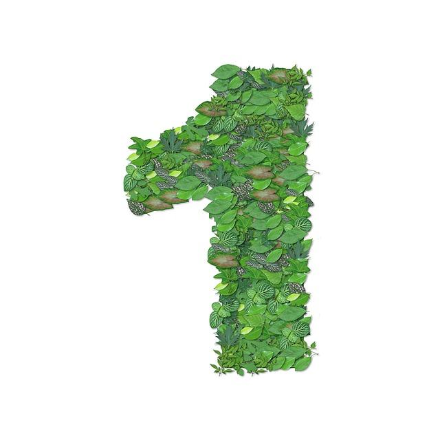Biomass Boiler Top Tip Number 1.